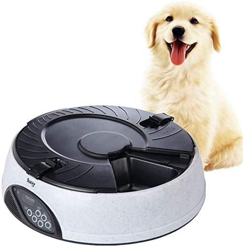 Automatische Dog Feeder automatische Haustier-Zufuhr Katzenfutter Lagerung Haustier Tiere Feeder SmallMedium Tiere Nahrungsmittelzufuhr-Haustier-Trockenfutter Spender Hundefutter Dispenser grün Jialel
