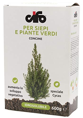Cifo Concime idrosolubile per siepi e piante verdi 600 g