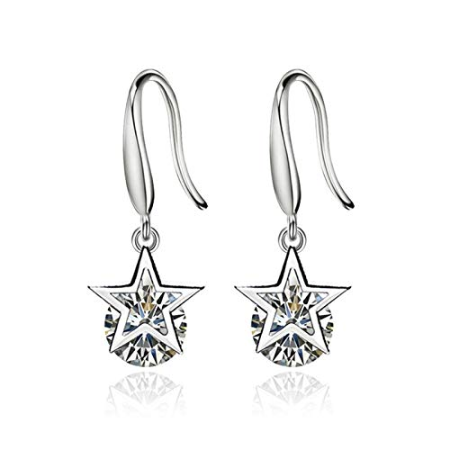 QYTSTORE Fashionable And Simple Long Earrings, Size: 2.5 * 1 Cm, Medium Pentagonal Zircon Long Tassel Women's Earrings Beautiful and stylish