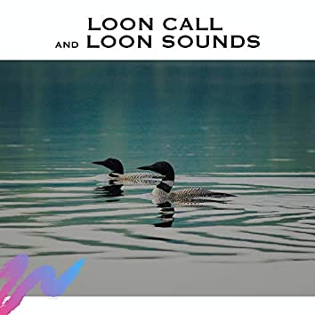 Loon Call and Loon Sounds