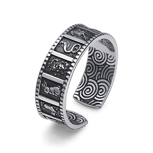 AieniD Rings Sterling Silver Zodiac Ring Size: silver black