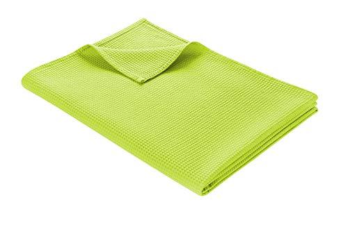 WOHNWOHL Tagesdecke 220 x 240 cm • Waffelpique leichte Sommerdecke aus 100prozent Baumwolle • Luftige Sofa-Decke vielseitig einsetzbar • Leicht zu pflegene Wohndecke • Baumwolldecke Farbe: Grün