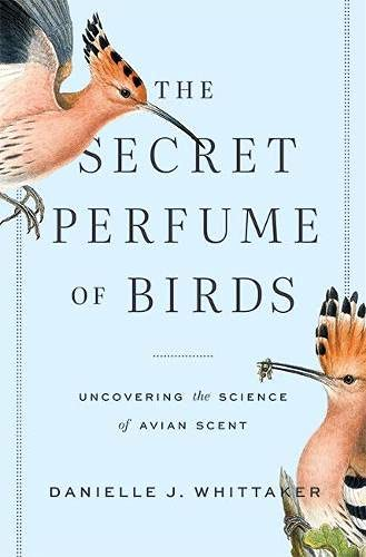 The Secret Perfume of Birds: Uncovering the Science of Avian Scent
