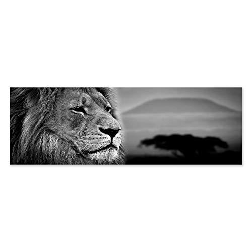 LOLAhome Cuadro cabecero de Cama en diseño Lienzo 180x60 cm (Leon)