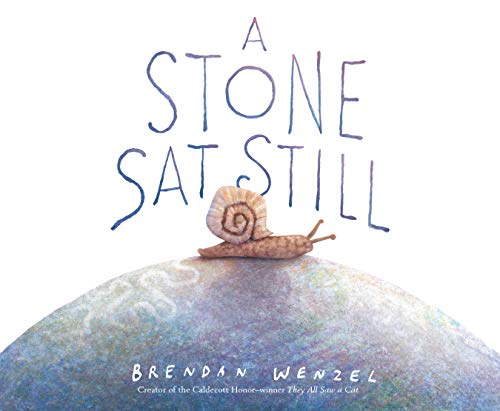 A Stone Sat Still: (Environmental and Nature Picture Book for Kids, Perspective Book for Preschool and Kindergarten, Award Winning Illustrator)