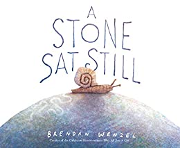 A Stone Sat Still: (Environmental and Nature Picture Book for Kids, Perspective Book for Preschool and Kindergarten, Award Winning Illustrator) by [Brendan Wenzel]