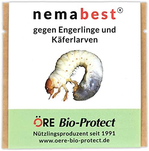 nemabest® HB Nematoden für 100m² (50 Mio.) gegen Engerlinge und Käferlarven vom Gartenlaubkäfer, Junikäfer, Maikäfer u. a.