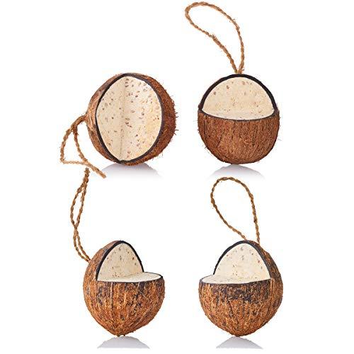 4 gefüllte ganze Kokosnüsse V-Cut zum aufhängen Ganzjahres Wildvogelfutter