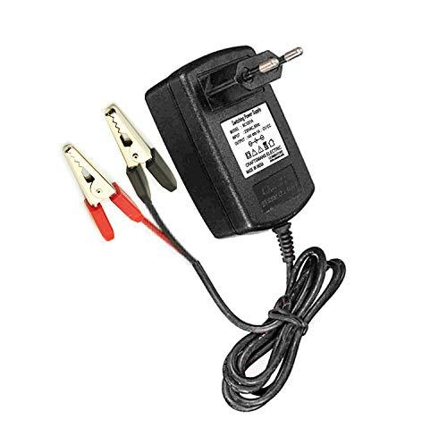 SHOPEE 12V Battery Charger for 2 Wheeler/Car/Truck Battery (6-40Ah)