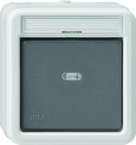 Gira, 011631, wipschakelaar, controlewissel WD opbouw, grijs