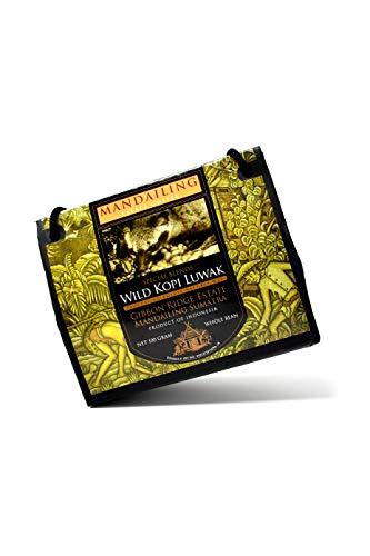 Kopi Luwak von freilebenden Tieren (Kaffeebohnen) - Die seltensten Kaffee der Welt -