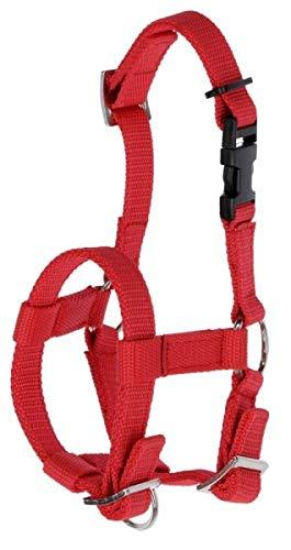 Kerbl Alpaka Halfter, alle Alpaka-Typen, Klippverschluss, Größenverstellbar, rot
