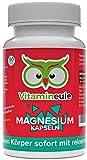 Magnesium Kapseln - 100% reines Magnesiumcitrat ohne Zusatzstoffe - hochdosiert - Qualität aus Deutschland! -...