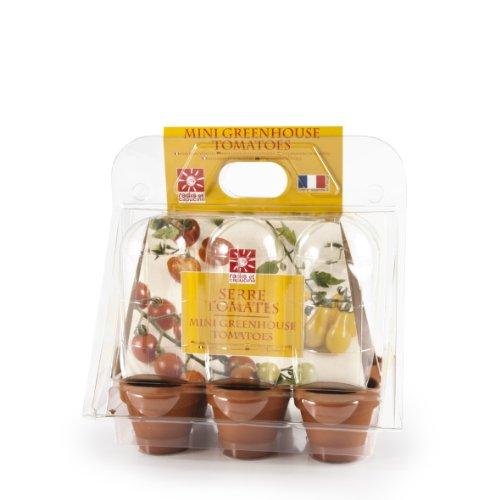 Radis et Capucine Mini Serre 6 Pots avec 2 Sachets de Graine Multicolore 21,7 x 15 x 2 cm