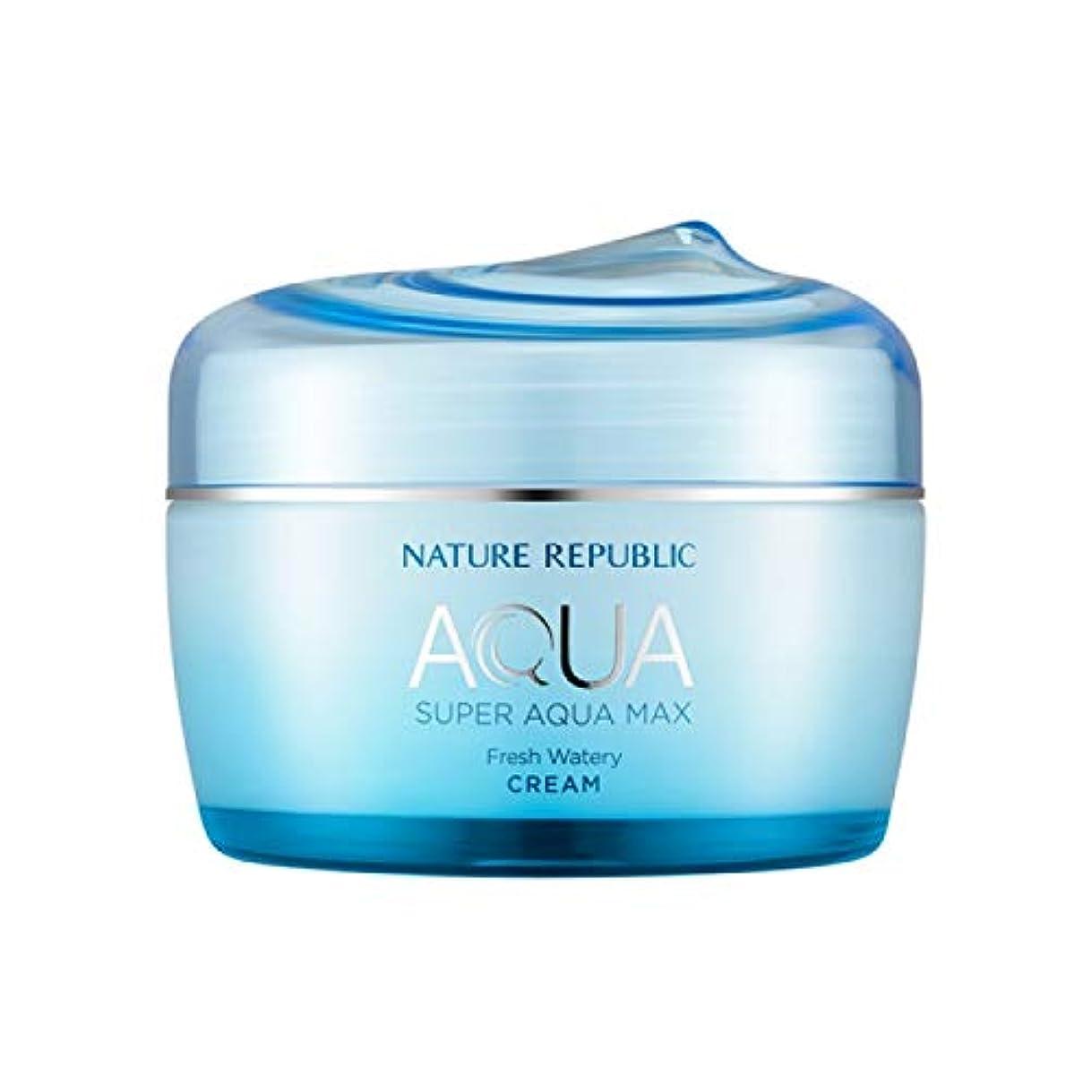見て熱放つネイチャーリパブリック(Nature Republic)スーパーアクアマックスフレッシュ水分クリーム[オイリー] 80ml / Super Aqua-Max Fresh Moisture Cream (Oily) 80ml :: 韓国コスメ [並行輸入品]