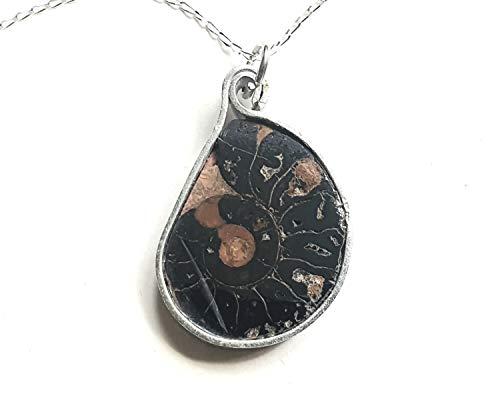 Superb Polished Madagascan Fossil Ammonite Slice Necklace-