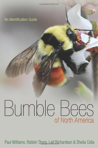 Compare Textbook Prices for Bumble Bees of North America: An Identification Guide Princeton Field Guides  ISBN 9780691152226 by Williams, Paul H.,Thorp, Robbin W.,Richardson, Leif L.,Colla, Sheila R.