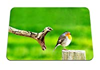 22cmx18cm マウスパッド (鳥ヘビ危険笑顔切り株) パターンカスタムの マウスパッド