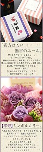 エフコBunBun!Bee(ブンブンビー)『プリザーブドBOX・賀寿のお祝い』
