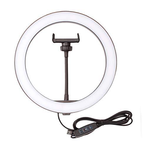 GZA Luz de Anillo LED 10 Pulgadas de 3 Pulgadas Nivel 10 Dimmable Fotografía Iluminación Teléfono de iluminación Composición con Soporte de Brazo Largo (Color : 26CM Ring Light)