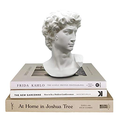 GoGift Greek Statue of David - Head Bust Statue for Roman Home Decor - Resin Sculpture