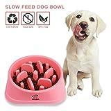 Decyam Gamelle antidérapante en Forme de Labyrinthe pour Animal Domestique - favorise Une Alimentation Saine et Une Digestion Lente (Pink)