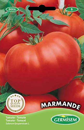 Germisem Marmande Semi di Pomodoro 2 g