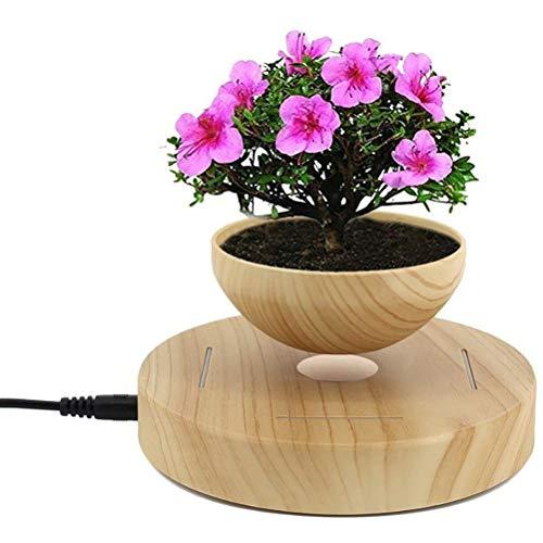 DUOCACL Jardinera de Maceta de levitación magnética, Maceta de bonsái de Aire levitante, exhibición de Maceta Flotante de decoración de Escritorio