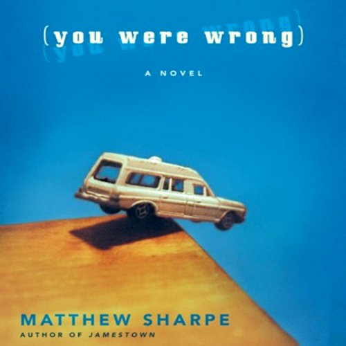 You Were Wrong audiobook cover art