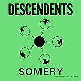 Songtexte von Descendents - Somery