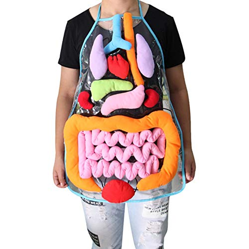 Lamptti - Delantal de peluche con diseño de órganos 3D,