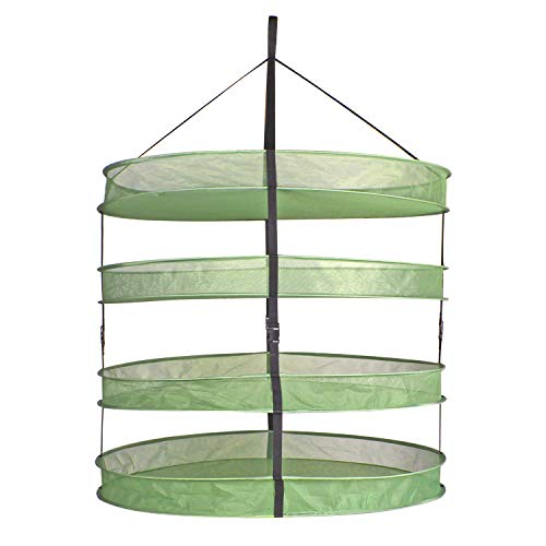 AIICIOO Herb Drying Rack - 4 Layer 3 Feet Diameter Collapsible Breathable Mesh Hanging Dry Net