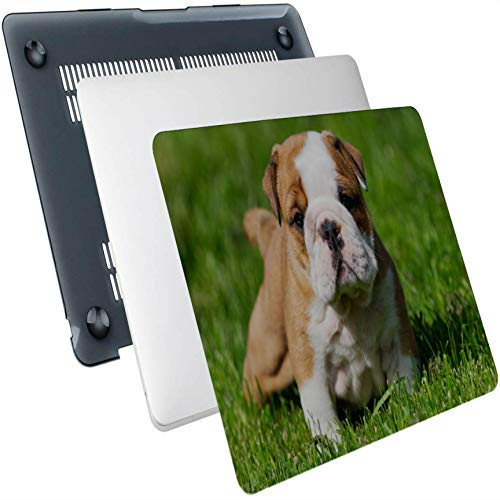 Macbookpro Case Three Cute Dogs Lying in A Dandelion Meadow Plastic Hard Shell Compatible Mac Air 13' Pro 13'/16' Mac Book Cases Protective Cover for MacBook 2016-2020 Version