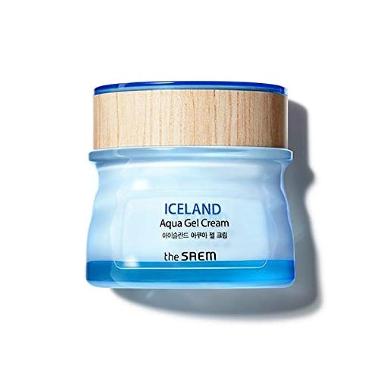 爆発ひらめき皿The saem Iceland Aqua Gel Cream ザセム アイスランド アクア ジェル クリーム 60ml [並行輸入品]