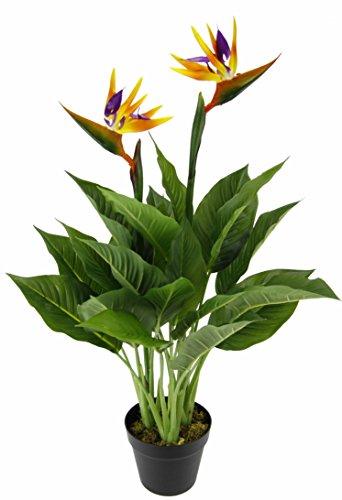 Flair Flower Strelitzie im Topf, Papageienblume, 2 Blüten, Kunstpflanze, Blumen, Kunstblumen, Blumensträuße, künstlich, Seidenblumen, Kunststoff, 80 x 20 x 20 cm, Polyester, Orange