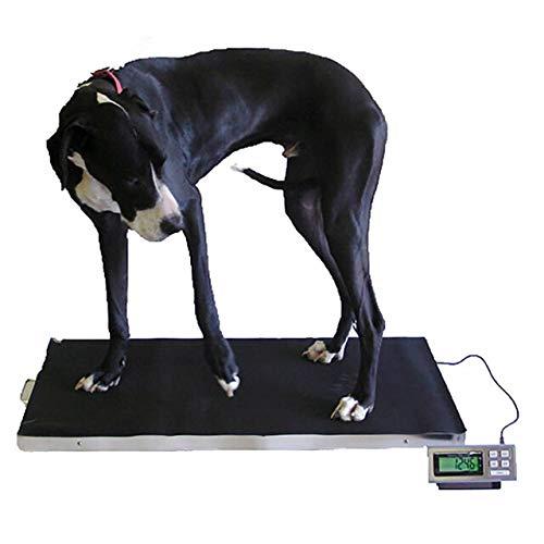 Tree® LVs-XL 350 - Veterinary Scales - 350kg x 0,1kg - Balanzas Veterinarias