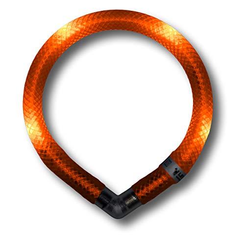 LEUCHTIE® Leuchthalsband Mini Sunset orange Größe 32,5 I LED Halsband extra für kleine Hunde I wasserdicht I enorm hell