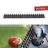 Gardigo 6004320 - 6 Mètres Pics Anti Pigeons Piques Pic pour Murs, Fenêtre,...