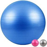 LOMOS Pelota de Ejercicio Profesional con Bomba de Aire en Distintos tamaños y Colores