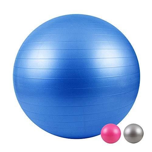LOMOS Ballon de Gymnastique fourni avec sa Pompe en différentes Dimensions et Couleurs