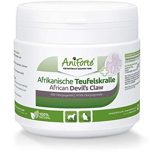 AniForte Afrikanische Teufelskralle für Hunde & Katzen 250g - Teufelskrallen Pulver für Sehnen & Bänder, Gelenkpulver zur Unterstützung der Beweglichkeit & Gelenkfunktion, ehemals Gelenk Aktiv (250 g)