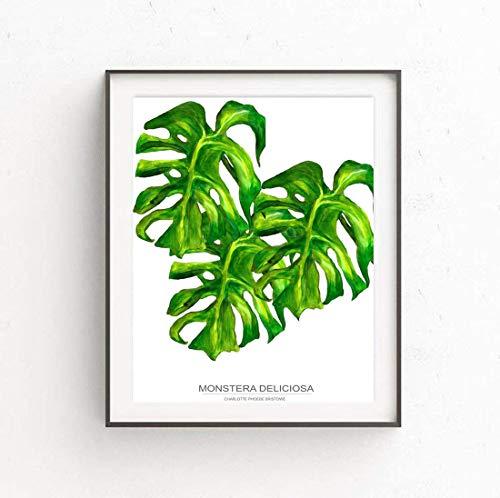 Charlotte Phoebe Premium A4 Botanische Kunst Originele Print Monstera Deliciosa Zwitserse Kaas Plant Muur Art Acryl Geschilderde Foto Poster. Perfect cadeau voor kantoor, keuken of slaapkamer.