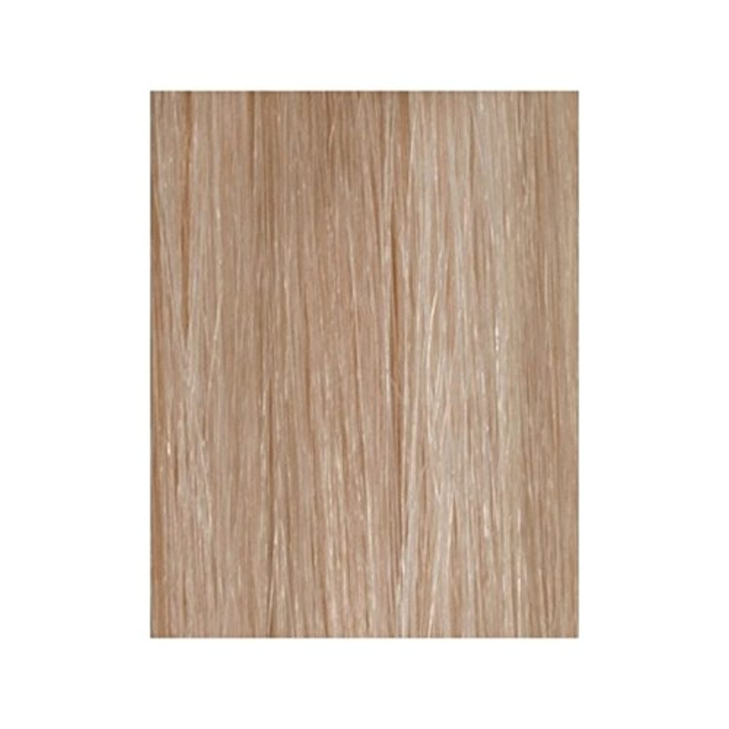 Beauty Works 100% Remy Colour Swatch Hair Extension - Champagne Blonde 613/18 - 美しさは、100%レミー色見本のヘアエクステンションの作品 - シャンパンブロンド18分の613 [並行輸入品]