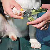 Safari Professional Large Nail Trimmer For Dogs