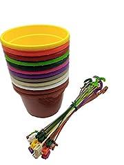 Idea Regalo - MURGIPLAST Vasi da appendere in plastica per piante e fiori, vasetti e ganci da giardino, vasi e ciondoli colorati, 12 pezzi (piccolo)