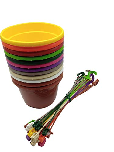 MURGIPLAST Plastic Hanging Plant Pots for Plants and Flowers, Terrines and Hooks, Colorful Planters and Hangers, Pack of 12 (Small)
