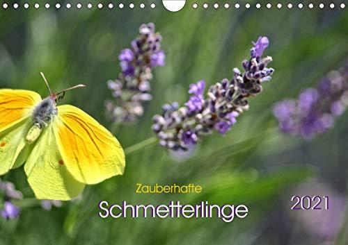Zauberhafte Schmetterlinge (Wandkalender 2021 DIN A4 quer)