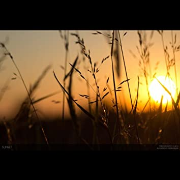 My Summer Song. Original By Neilswanson Cp2014