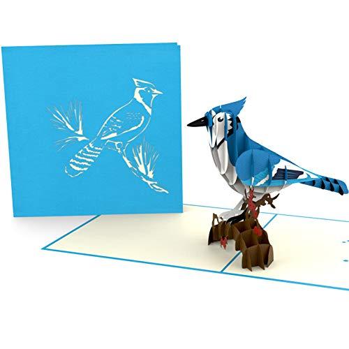 XXL 3D-Pop-Up-Karte, Blauhäher, blauer Vogel, diverse Anlässe, Geburtstagskarte, Glückwunschkarte, Grußkarte als Dankeschön, originelle Geschenk-Karte, Danksagungskarten, Alles Gute Dankeskarten
