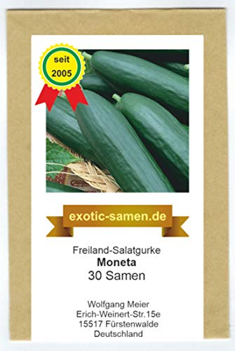 Freiland-Salatgurke - Moneta F1 Hybrid - bitterfrei - 30 Samen